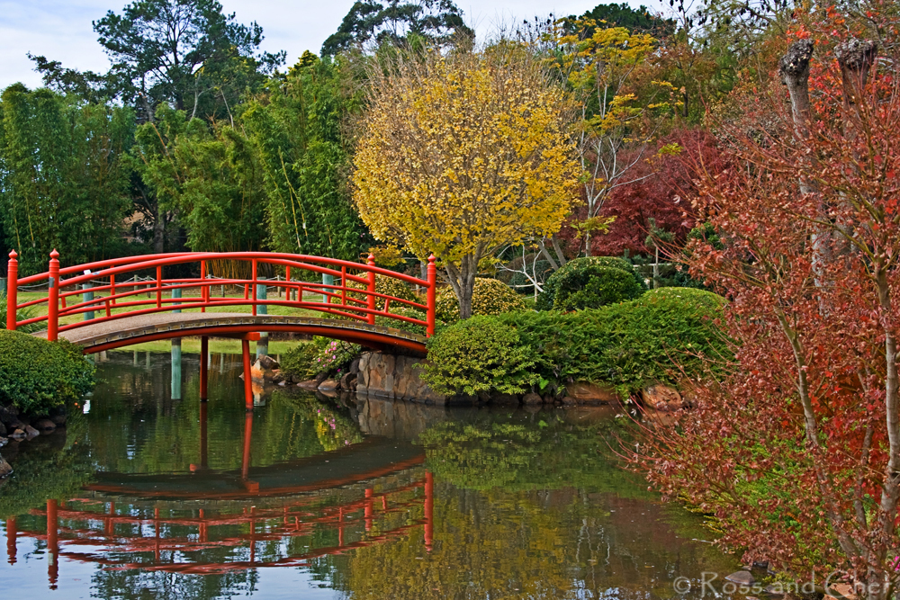 Toowoomba S Japanese Gardens Photography Location Guide